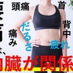 腰痛は内臓が悪い人に多い?整体で内臓治療できるって本当?